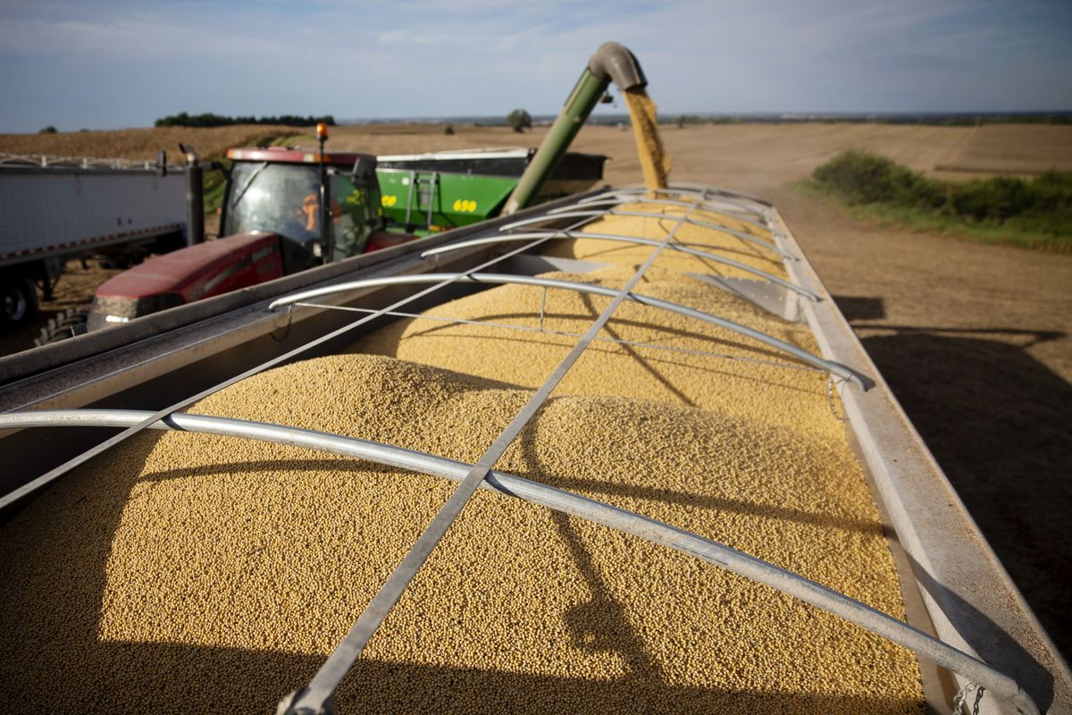 As China Halts U.S. Soy Purchases, 'Unknown' Buyers Step Up
