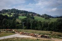 relates to Europe Wants to Cultivate a New Generation of Sustainable Farmers