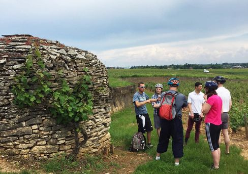 A bike tour guide explains the tiered system of Burgundy wine classification in a vineyard outside Pommard. The stone mound is a historic hut used by field workers to relax in cool shade.