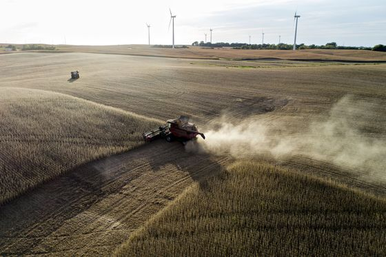 On Tariff Anniversary, Soybean Farmers Are Struggling Even as Prices Recover