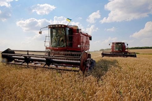 Ukraine???s Next Casualties Could Be Its Farmers