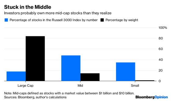 Mid-Cap Stocks Aren't Ready for a Starring Role