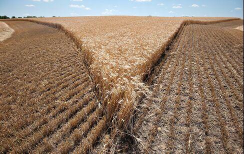 Senate Approves Agriculture Bill Aimed at Saving $23.6 Billion