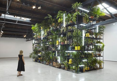 Antoine's Organ, 2016, a massive scaffolding installation with plants, books, tvs, and mounds of shea butter. There'san upright player piano on the second level of the scaffold, which is playedon Tuesdays, Wednesdays, and Saturdaysby the musician Antoine Baldwin.