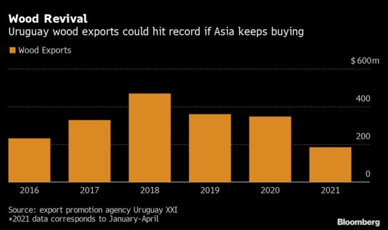 Uruguay Wood Exports Seen Headed for Record on Asia Demand