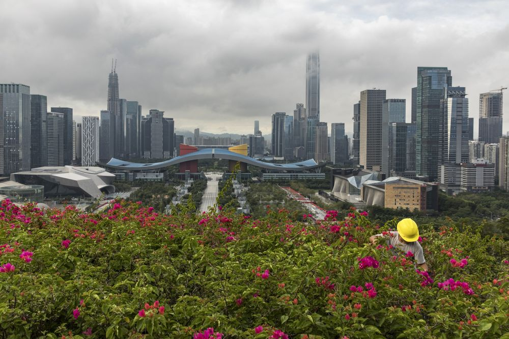 A worker attends to plants at Lianhua Park as buildings stand in the background in Shenzhen.