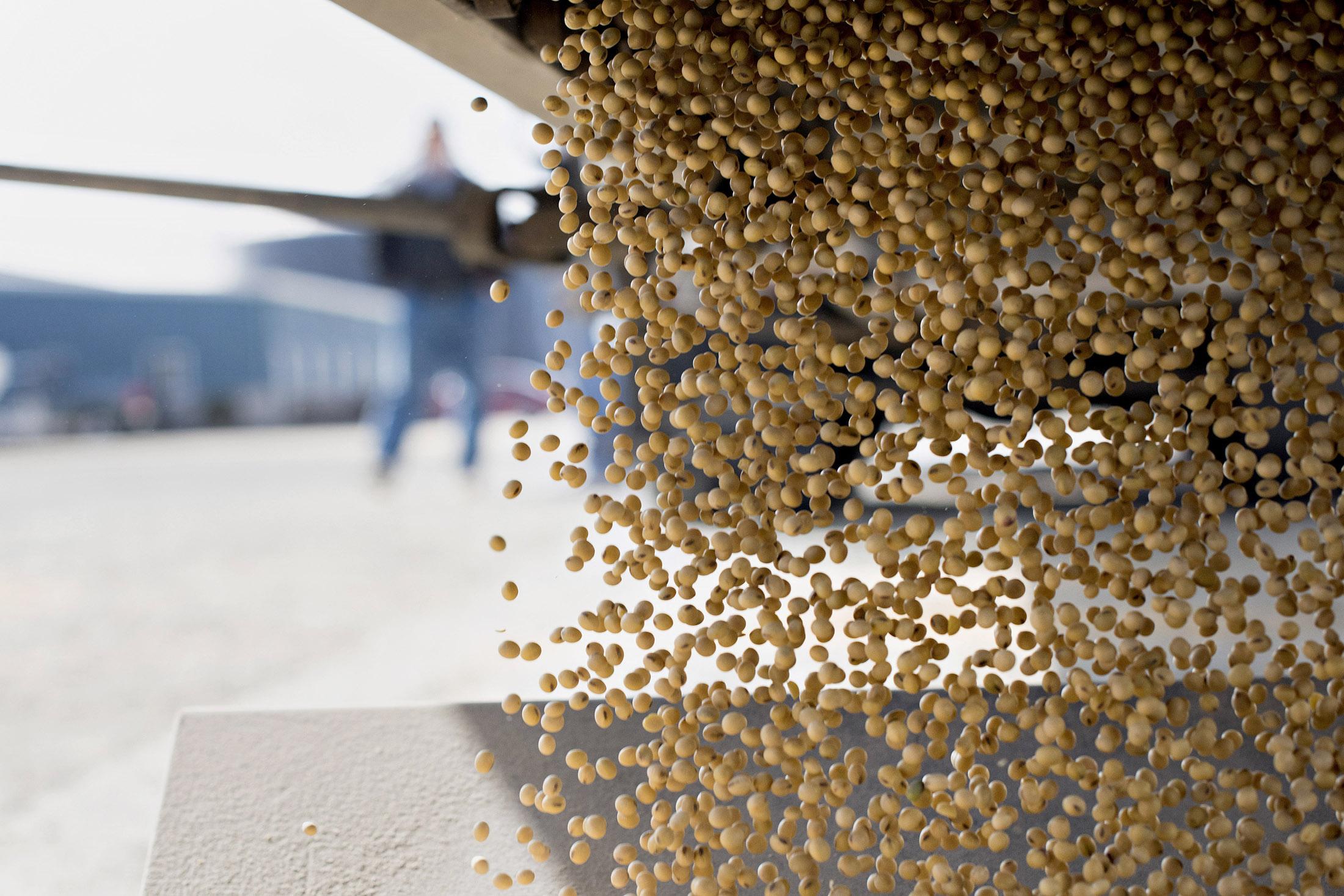 Bayer Said Planning to Meet Banks for $57 Billion Monsanto Loan - Bloomberg