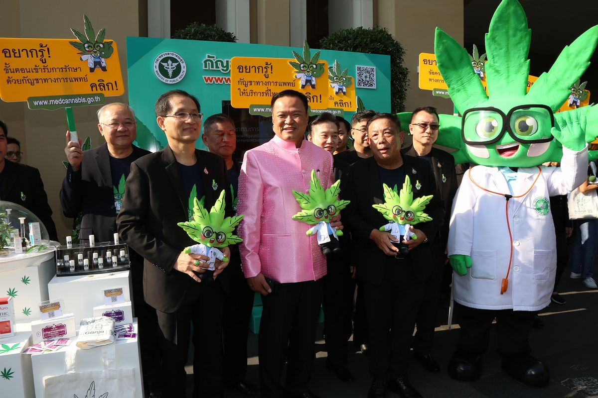 Pot Frenzy Sweeps Thailand as Government Touts Medical Marijuana