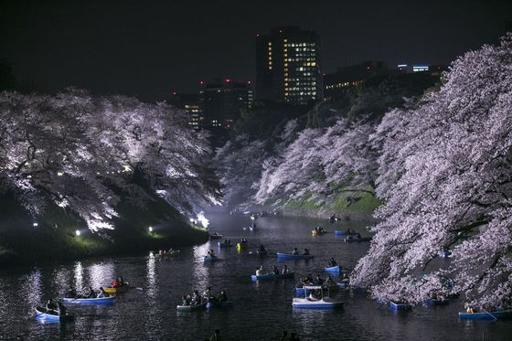 Tokyo Braces for Critical Weekend to Contain Virus Outbreak