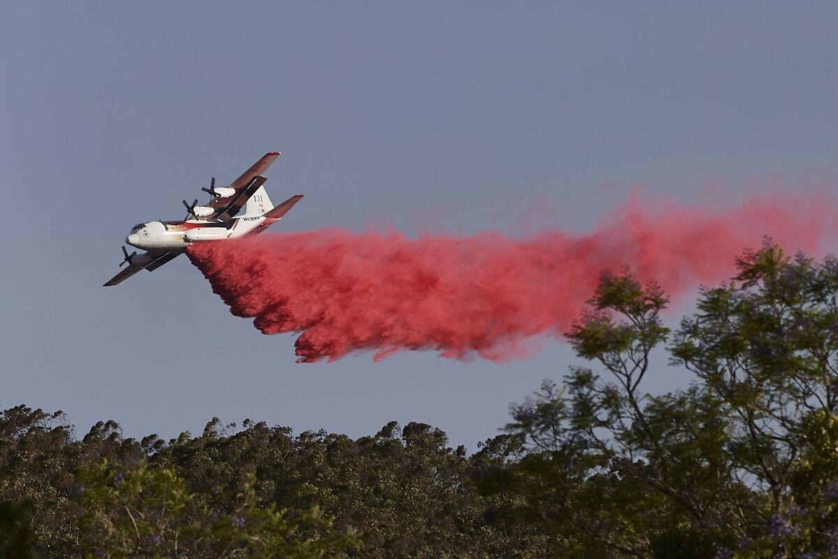 Three U.S. Firefighters Die in Water-Bomber Crash in Australia