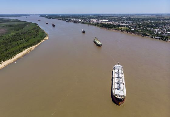 Argentine Ship Lineup Swells as Soy Crushers Extend Strike