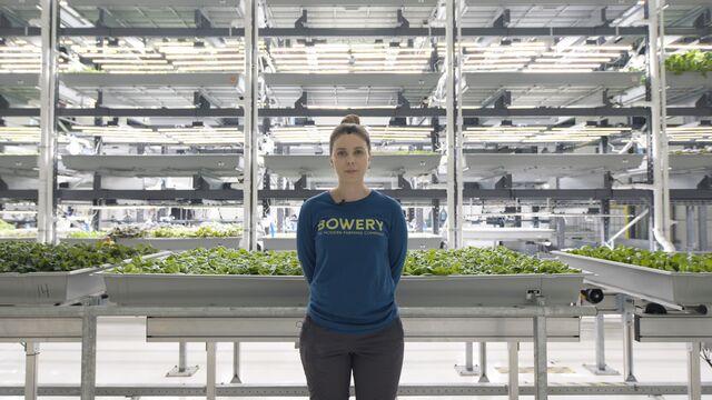 At This High-Tech Farm, the Boss Is an AI-Powered Algorithm