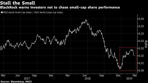 BlackRock Warns Investors Against Chasing Small-Cap Stock Rally