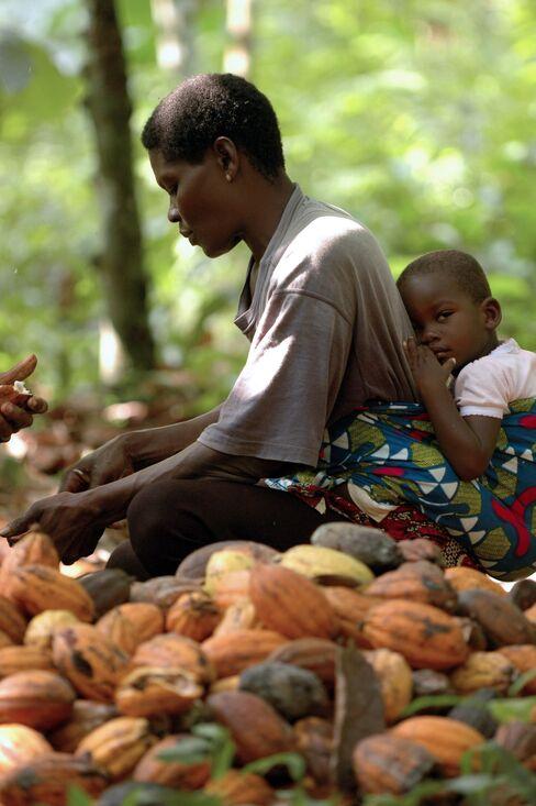 Chocolatier Mondelez Pledges to Aid Women Farmers Amid Criticism