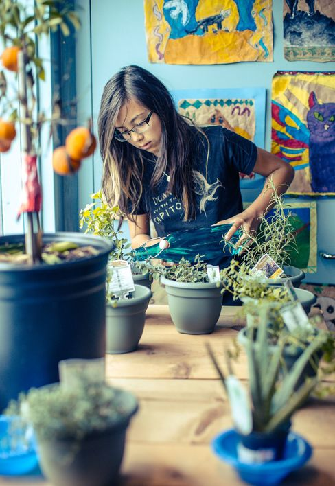 A student watering the indoor garden at Fort Mason AltSchool.