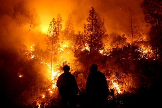Facing $17 Billion in Fire Damages, a CEO Blames Climate Change