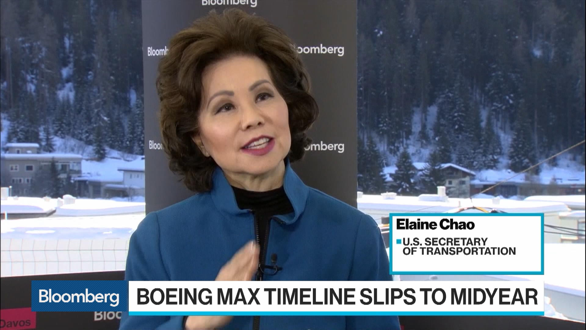 Davos: U.S. DOT Secretary Elaine Chao Says Boeing's Grounded 737 Max Has No Timetable for Return