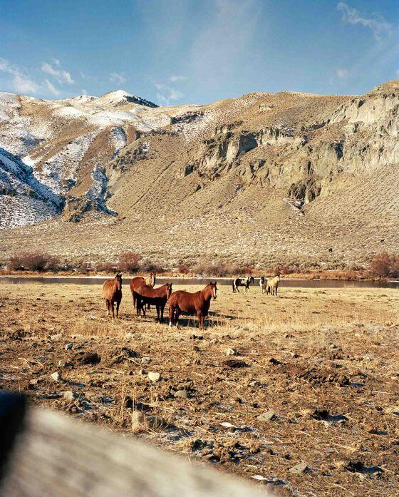 Idaho's Hidden Hot Springs Will Simmer Away Reality