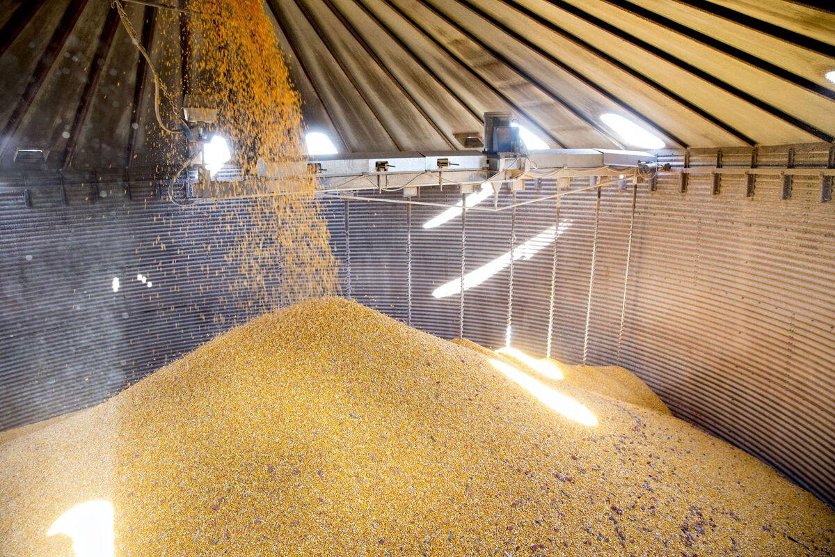 Trump EPA Pledges Biofuel Boost to Calm Corn-State Criticism
