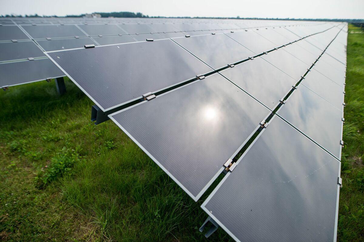 'Avian Incident' Knocks Out 84% of Massive California Solar Farm