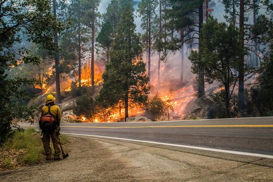 California Wildfire Nears Lake Tahoe, Forcing Evacuations