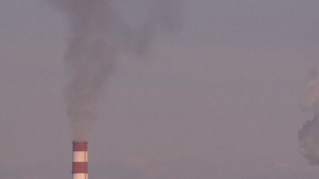 Air Pollution Kills 7 Million People a Year, WHO Reports