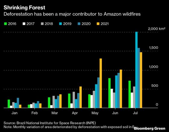 Fires and Deforestation Made 2020 a Nightmare Year for the Amazon
