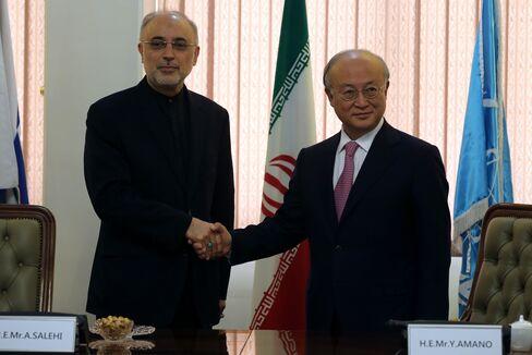Iran's Ali Akbar Salehi and IAEA Director Yukiya Amano