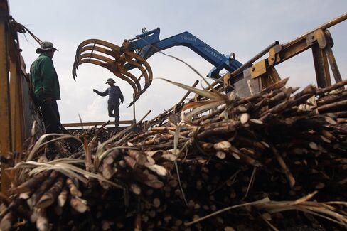 Refining Sugar Sours as Premium Shrinks Amid Glut