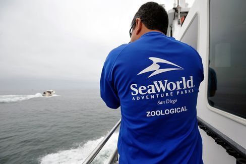 SeaWorld Jumps After Raising $702 Million in Initial Offering