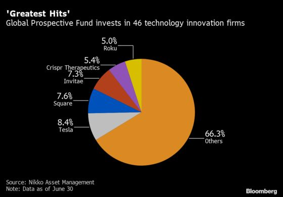 Tesla Bet Propels New Japan Fund to the Top With 84% Return