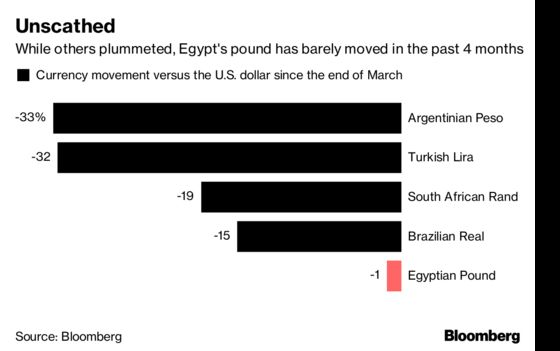 Traders Seeking Refuge From Volatility Will Find It in Egypt