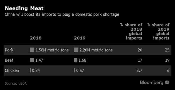 Pig 'Ebola' Virus Sends Shock Waves Through Global Food Chain