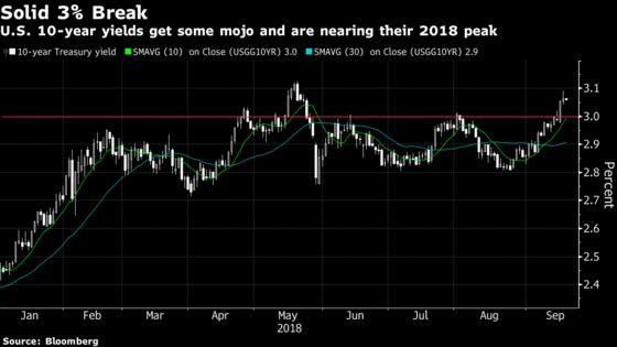 Treasury Yields Take Flight, Setting Up Big Shorts for Rewards