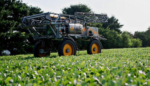 Corn Leads Grain Surge as U.S. Drought Widening