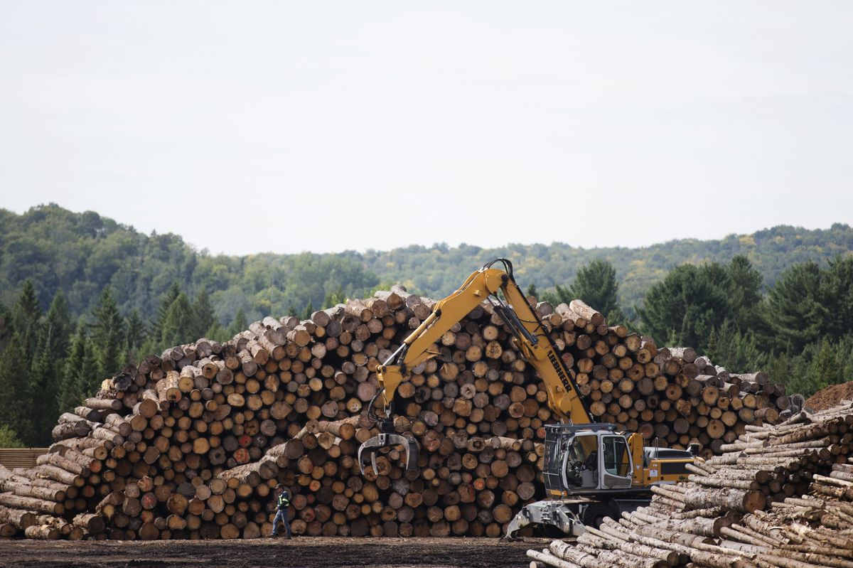 WTO Delivers Mixed Ruling in U.S.-Canada Lumber Dispute