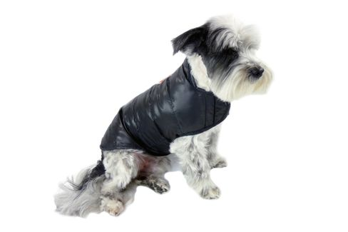 The Featherlite Packable Down Dog Coat in black.