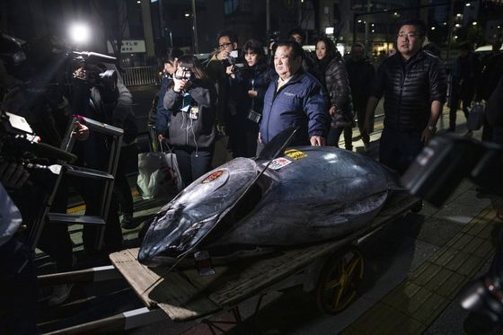 World's Most-Prized Fish Sold for $3.1 Million in Tokyo