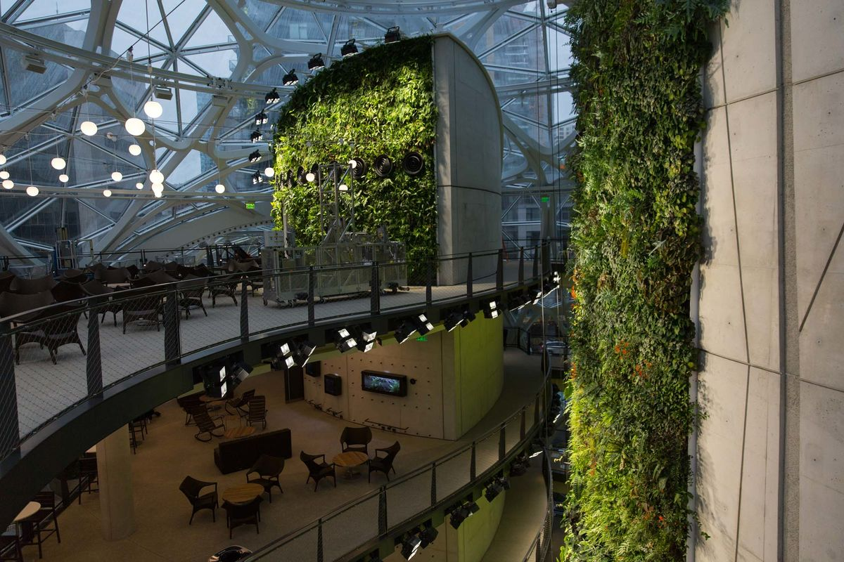 Inside Amazon S Giant Spheres Where Workers Chill In A