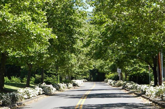 Best Place to Raise Kids in Oregon: West Linn