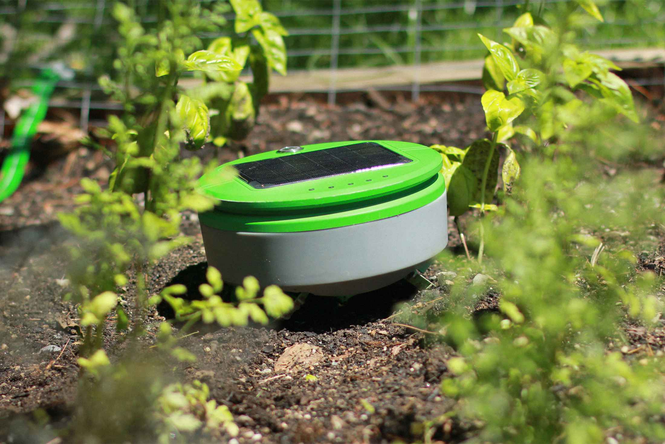 This $300 Robot Can Weed Your Garden