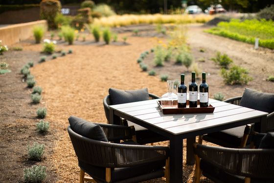 The Top 8 Places to Taste Wine in California Right Now