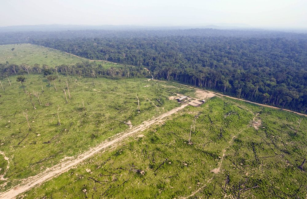 Deforestation in Brazil's Amazon rainforest.