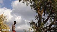 relates to Ethiopia Plants 350 Million Trees in One Day to Combat Drought