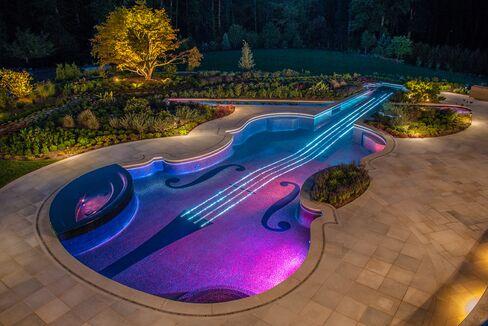 Jay Dweck's Violin-Shaped Pool