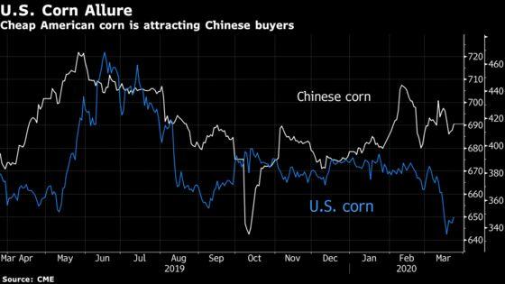 Cheap U.S. Corn Lures Chinese Buyers Seeking American Grain