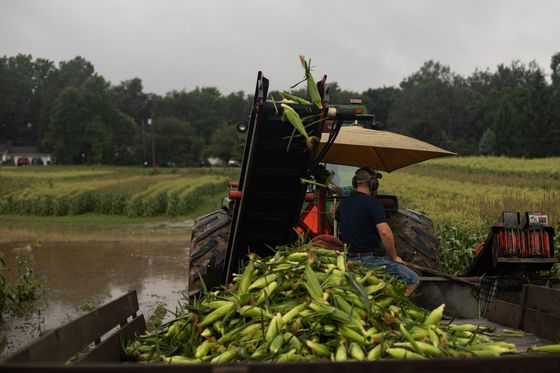 U.S. Farmers Brace for Inflation as Highs of Crop Rally Wear Off