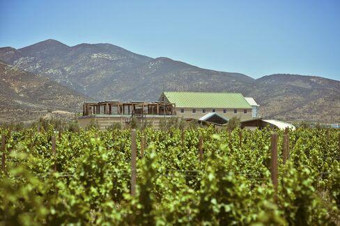 Finca La Carrodilla, one of Valle's top wineries.