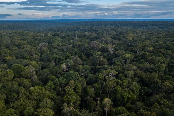 Brazil Plans to Allow Mining in Amazonian Indigenous Reserves