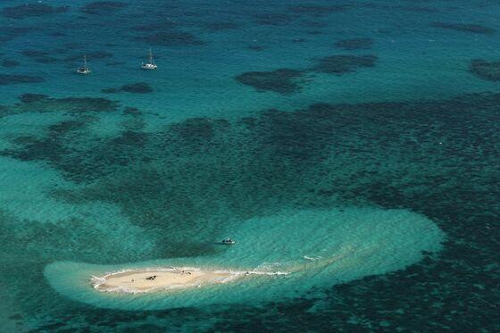 Snorkel Diplomacy is Australia's New Tactic in Reef Climate Spat